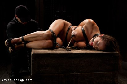 Photo number 5 from Boobs in Bondage - A day with Trina shot for Device Bondage on Kink.com. Featuring Trina Michaels in hardcore BDSM & Fetish porn.