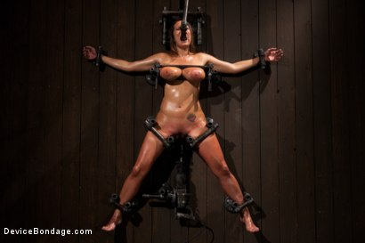 Photo number 7 from Boobs in Bondage - A day with Trina shot for Device Bondage on Kink.com. Featuring Trina Michaels in hardcore BDSM & Fetish porn.