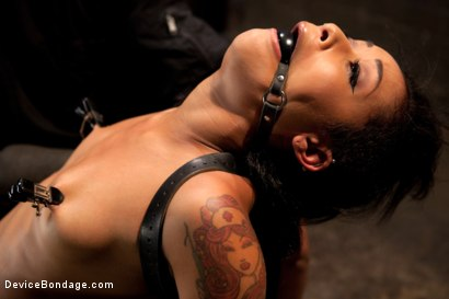 Photo number 1 from Part 2: Sexual Overload shot for Device Bondage on Kink.com. Featuring Skin Diamond and Maestro in hardcore BDSM & Fetish porn.