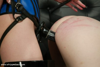 Photo number 13 from Chanta-Rose and Madison Young shot for Whipped Ass on Kink.com. Featuring Madison Young and Chanta-Rose in hardcore BDSM & Fetish porn.