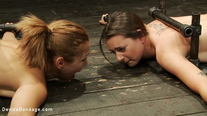 Photo number 4 from Face down ass up x 2 shot for Device Bondage on Kink.com. Featuring Isis Love, Missy Minks and Audrey Rose in hardcore BDSM & Fetish porn.