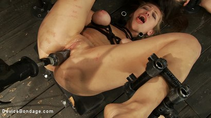 Photo number 4 from Machine fucked zippered sluts shot for Device Bondage on Kink.com. Featuring Isis Love, Missy Minks and Audrey Rose in hardcore BDSM & Fetish porn.