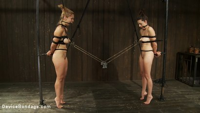 Photo number 3 from Taut pussies, bound tits, prancing whores shot for Device Bondage on Kink.com. Featuring Isis Love, Missy Minks and Audrey Rose in hardcore BDSM & Fetish porn.