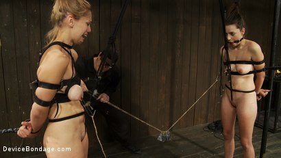 Photo number 8 from Taut pussies, bound tits, prancing whores shot for Device Bondage on Kink.com. Featuring Isis Love, Missy Minks and Audrey Rose in hardcore BDSM & Fetish porn.