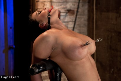 Photo number 14 from Hot 20 something with huge tits<br>Hair tied back, gagged, bent, brought to her toes Brutal Orgasms! shot for Hogtied on Kink.com. Featuring Mackenzee Pierce in hardcore BDSM & Fetish porn.