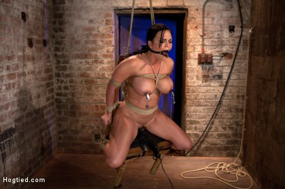 Photo number 14 from Bound in a chair with a vibrator perfectly stuck on her clit  Let's just watch her suffer and cum shot for Hogtied on Kink.com. Featuring Mackenzee Pierce in hardcore BDSM & Fetish porn.
