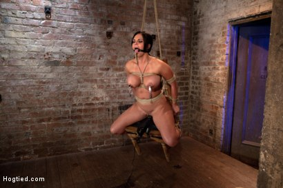 Photo number 10 from Bound in a chair with a vibrator perfectly stuck on her clit  Let's just watch her suffer and cum shot for Hogtied on Kink.com. Featuring Mackenzee Pierce in hardcore BDSM & Fetish porn.