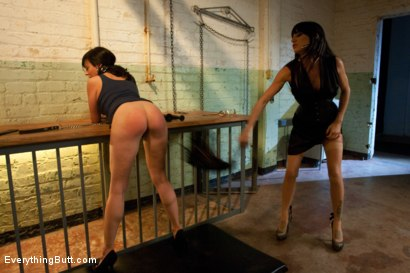 Photo number 6 from Anal Punishment: Gia DiMarco and Aariella Alexis shot for Everything Butt on Kink.com. Featuring Mark Davis, Gia DiMarco and AArielle Alexis in hardcore BDSM & Fetish porn.