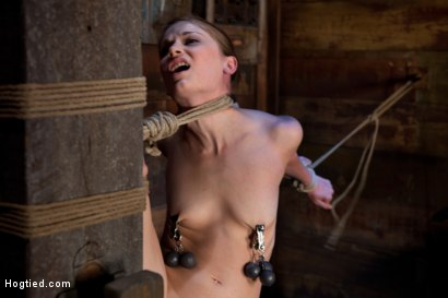Photo number 11 from Standing splits, full strappado<br>Intense foot caning, brutal orgasms ripped from her helpless body shot for Hogtied on Kink.com. Featuring Sensi Pearl and Rain DeGrey in hardcore BDSM & Fetish porn.