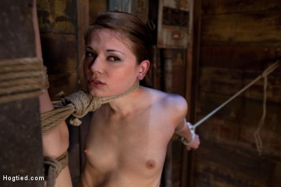 Photo number 5 from Standing splits, full strappado<br>Intense foot caning, brutal orgasms ripped from her helpless body shot for Hogtied on Kink.com. Featuring Sensi Pearl and Rain DeGrey in hardcore BDSM & Fetish porn.
