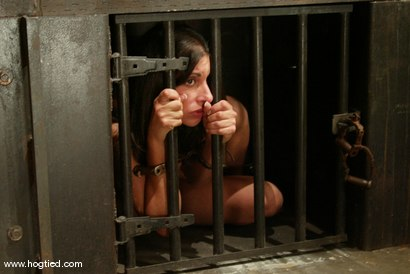 Photo number 3 from Talia Monet shot for Hogtied on Kink.com. Featuring Talia Monet in hardcore BDSM & Fetish porn.