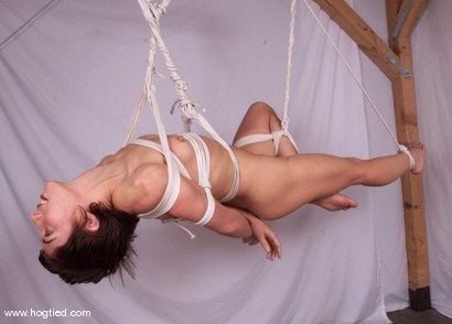 Photo number 14 from Viva shot for Hogtied on Kink.com. Featuring Viva in hardcore BDSM & Fetish porn.