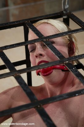 Photo number 6 from Lorelei Lee and Viking shot for Water Bondage on Kink.com. Featuring Lorelei Lee and Viking in hardcore BDSM & Fetish porn.