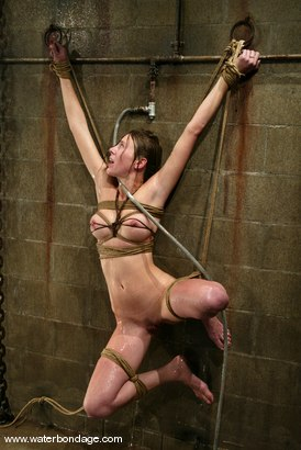 Photo number 5 from Audrey Leigh shot for Water Bondage on Kink.com. Featuring Audrey Leigh in hardcore BDSM & Fetish porn.