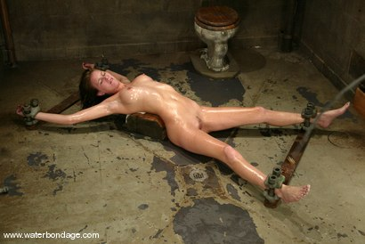 Photo number 12 from Audrey Leigh shot for Water Bondage on Kink.com. Featuring Audrey Leigh in hardcore BDSM & Fetish porn.
