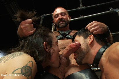 Photo number 14 from Josh West - Live Shoot shot for Bound Gods on Kink.com. Featuring Van Darkholme, Josh West, Dylan Deap and Dominic Pacifico in hardcore BDSM & Fetish porn.
