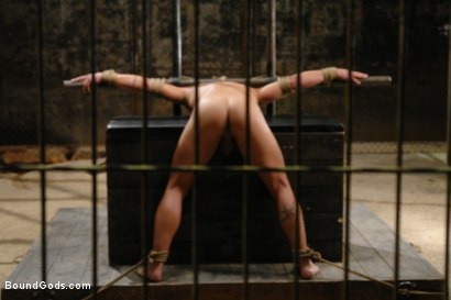 Photo number 12 from  shot for  on Kink.com. Featuring  in hardcore BDSM & Fetish porn.