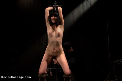 Photo number 2 from Breaking of Bobbi Starr shot for Device Bondage on Kink.com. Featuring Bobbi Starr in hardcore BDSM & Fetish porn.