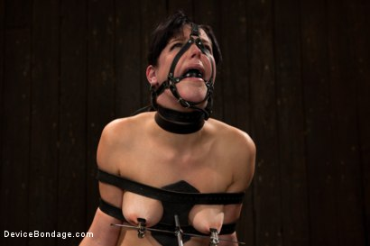 Photo number 13 from Breaking of Bobbi Starr shot for Device Bondage on Kink.com. Featuring Bobbi Starr in hardcore BDSM & Fetish porn.