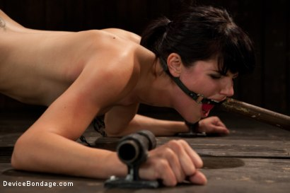 Photo number 8 from Breaking of Bobbi Starr shot for Device Bondage on Kink.com. Featuring Bobbi Starr in hardcore BDSM & Fetish porn.