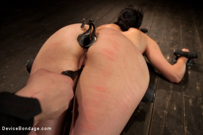 Photo number 9 from Breaking of Bobbi Starr shot for Device Bondage on Kink.com. Featuring Bobbi Starr in hardcore BDSM & Fetish porn.