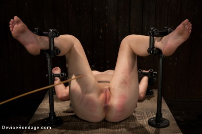 Photo number 14 from Cumming isn't easy - young redhead learns the ways of Device. shot for Device Bondage on Kink.com. Featuring Sofia Lauryn in hardcore BDSM & Fetish porn.