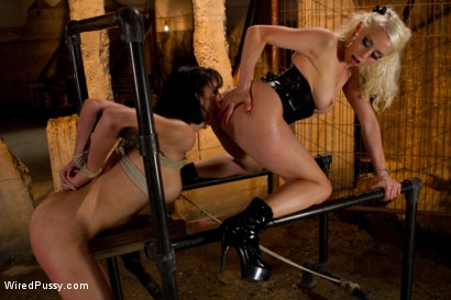 Photo number 11 from Hot MILF gets her ass Worked Over Wiredpussy Style shot for Wired Pussy on Kink.com. Featuring Lorelei Lee and Roxanne Hall in hardcore BDSM & Fetish porn.