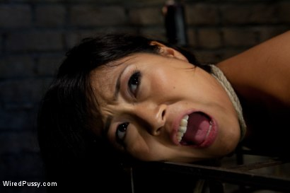 Photo number 5 from Three Hot Dommes, One Tough Sub, All Girl Wiredpussy Gangbang!!! shot for Wired Pussy on Kink.com. Featuring Aiden Starr, Ariel X, Lorelei Lee and Yuki Mori in hardcore BDSM & Fetish porn.