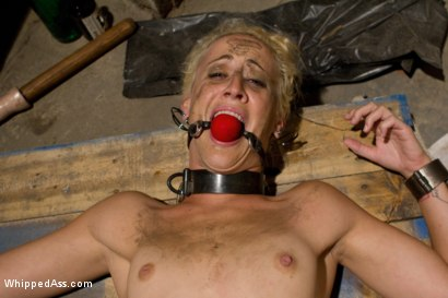 Photo number 8 from Lesbian Glory Hole shot for Whipped Ass on Kink.com. Featuring Felony and Dylan Ryan in hardcore BDSM & Fetish porn.
