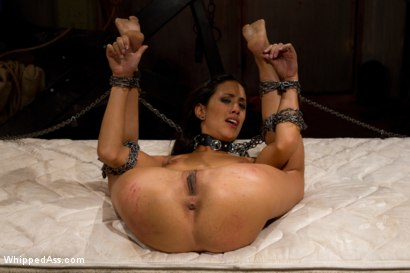 Photo number 7 from Shy Slut shot for Whipped Ass on Kink.com. Featuring Aiden Starr and Lyla Storm in hardcore BDSM & Fetish porn.