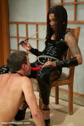 Photo number 13 from Mistress Heart and Wild Bill shot for Men In Pain on Kink.com. Featuring Mistress Heart and Wild Bill in hardcore BDSM & Fetish porn.