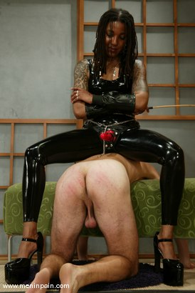 Photo number 9 from Mistress Heart and Wild Bill shot for Men In Pain on Kink.com. Featuring Mistress Heart and Wild Bill in hardcore BDSM & Fetish porn.