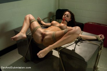 Photo number 8 from Airport Security shot for Sex And Submission on Kink.com. Featuring James Deen and Chanel Preston in hardcore BDSM & Fetish porn.