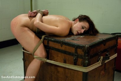 Photo number 14 from Airport Security shot for Sex And Submission on Kink.com. Featuring James Deen and Chanel Preston in hardcore BDSM & Fetish porn.