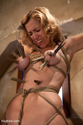 Photo number 3 from Hot blond has clothespins flogged off her breasts, fucked with a stick, vibrated and made to cum! shot for Hogtied on Kink.com. Featuring Audrey Rose in hardcore BDSM & Fetish porn.