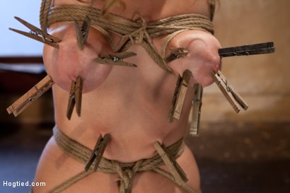 Photo number 5 from Hot blond has clothespins flogged off her breasts, fucked with a stick, vibrated and made to cum! shot for Hogtied on Kink.com. Featuring Audrey Rose in hardcore BDSM & Fetish porn.