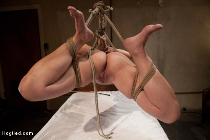 Photo number 14 from Helpless Blonde in hogtie struggling through orgasm after orgasm. shot for Hogtied on Kink.com. Featuring Audrey Rose in hardcore BDSM & Fetish porn.