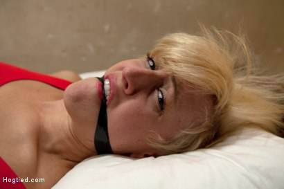 Photo number 5 from Rich blond taken, bound with tape<br>Manhandled, stripped, exposed, made to cum like a common whore. shot for Hogtied on Kink.com. Featuring Dylan Ryan in hardcore BDSM & Fetish porn.