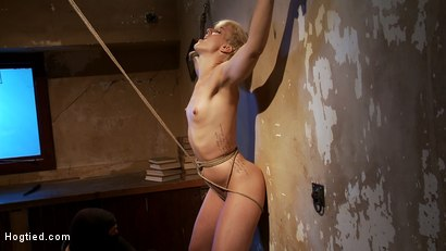 Photo number 6 from Tall hot blonde on tip-toes hanging from a crotch rope, made to squirt. shot for Hogtied on Kink.com. Featuring Dylan Ryan in hardcore BDSM & Fetish porn.