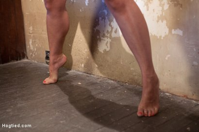 Photo number 10 from Tall hot blonde on tip-toes hanging from a crotch rope, made to squirt. shot for Hogtied on Kink.com. Featuring Dylan Ryan in hardcore BDSM & Fetish porn.