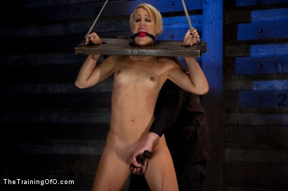 Photo number 2 from Dylan - Day One<br>Tight Bondage, Extreme Orgasms, and Full Domination! shot for The Training Of O on Kink.com. Featuring Dylan Ryan in hardcore BDSM & Fetish porn.