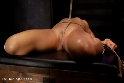 Photo number 6 from Dylan - Day One<br>Tight Bondage, Extreme Orgasms, and Full Domination! shot for The Training Of O on Kink.com. Featuring Dylan Ryan in hardcore BDSM & Fetish porn.