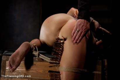 Photo number 13 from Dylan - Day One<br>Tight Bondage, Extreme Orgasms, and Full Domination! shot for The Training Of O on Kink.com. Featuring Dylan Ryan in hardcore BDSM & Fetish porn.