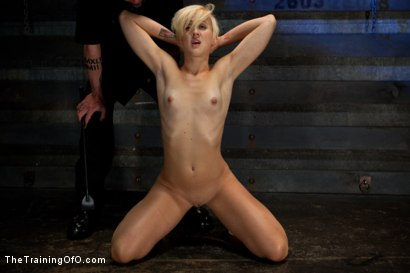 Photo number 5 from Dylan-Day 4<br>Sexual Domination shot for The Training Of O on Kink.com. Featuring Dylan Ryan and Maestro in hardcore BDSM & Fetish porn.