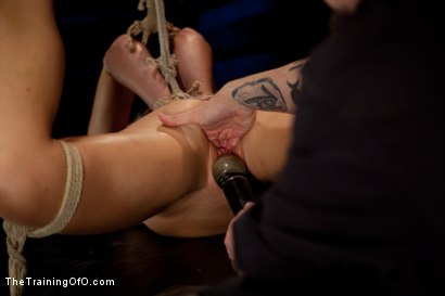 Photo number 6 from Dylan Ryan Day 3<br>Facing Fears with Extreme Binds and Pussy Stretching  shot for The Training Of O on Kink.com. Featuring Dylan Ryan in hardcore BDSM & Fetish porn.