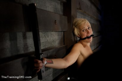 Photo number 8 from Dylan Ryan Day 3<br>Facing Fears with Extreme Binds and Pussy Stretching  shot for The Training Of O on Kink.com. Featuring Dylan Ryan in hardcore BDSM & Fetish porn.