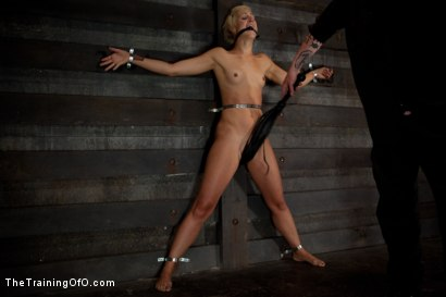 Photo number 9 from Dylan Ryan Day 3<br>Facing Fears with Extreme Binds and Pussy Stretching  shot for The Training Of O on Kink.com. Featuring Dylan Ryan in hardcore BDSM & Fetish porn.