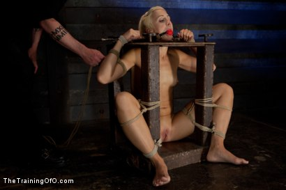 Photo number 2 from Dylan Ryan Day 3<br>Facing Fears with Extreme Binds and Pussy Stretching  shot for The Training Of O on Kink.com. Featuring Dylan Ryan in hardcore BDSM & Fetish porn.