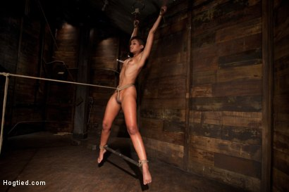 Photo number 6 from Category 5 wrist suspension<br>Caned, nipple torment and brutal crotch rope! Left to hang & suffer! shot for Hogtied on Kink.com. Featuring Skin Diamond and Isis Love in hardcore BDSM & Fetish porn.