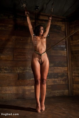 Photo number 11 from Category 5 wrist suspension<br>Caned, nipple torture and brutal crotch rope! Left to hang & suffer! shot for Hogtied on Kink.com. Featuring Skin Diamond and Isis Love in hardcore BDSM & Fetish porn.